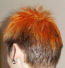 Do or Dye :P Hair Dyeing Tips